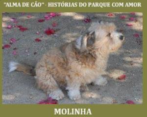 molinhapascoa