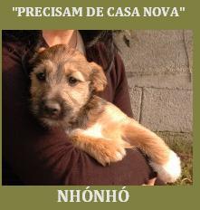 nhonhopascoa1